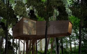 10-cabanes-incroyables-qui-vous-feront-regretter-de-ne-pas-habiter-dans-les-arbres14