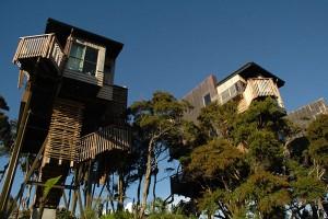 10-cabanes-incroyables-qui-vous-feront-regretter-de-ne-pas-habiter-dans-les-arbres16