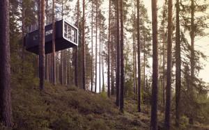 10-cabanes-incroyables-qui-vous-feront-regretter-de-ne-pas-habiter-dans-les-arbres17