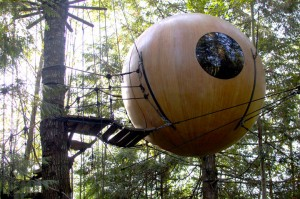 10-cabanes-incroyables-qui-vous-feront-regretter-de-ne-pas-habiter-dans-les-arbres18
