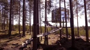 10-cabanes-incroyables-qui-vous-feront-regretter-de-ne-pas-habiter-dans-les-arbres6